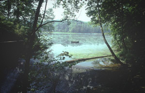 Photo showing Spring Mill Lake.