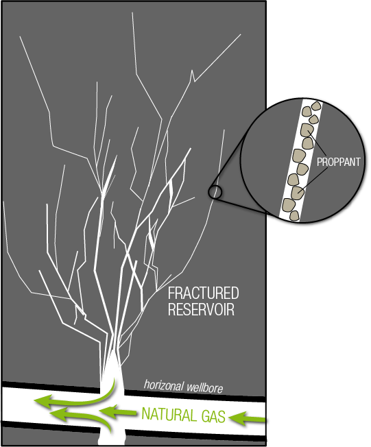 Schematic illustration of fractures in a natural-gas-bearing shale reservoir. The proppant (usually sand) holds the fractures open to allow natural gas to flow from the reservoir to the wellbore. The fracture density is likely denser than what is shown. Illustration not to scale.