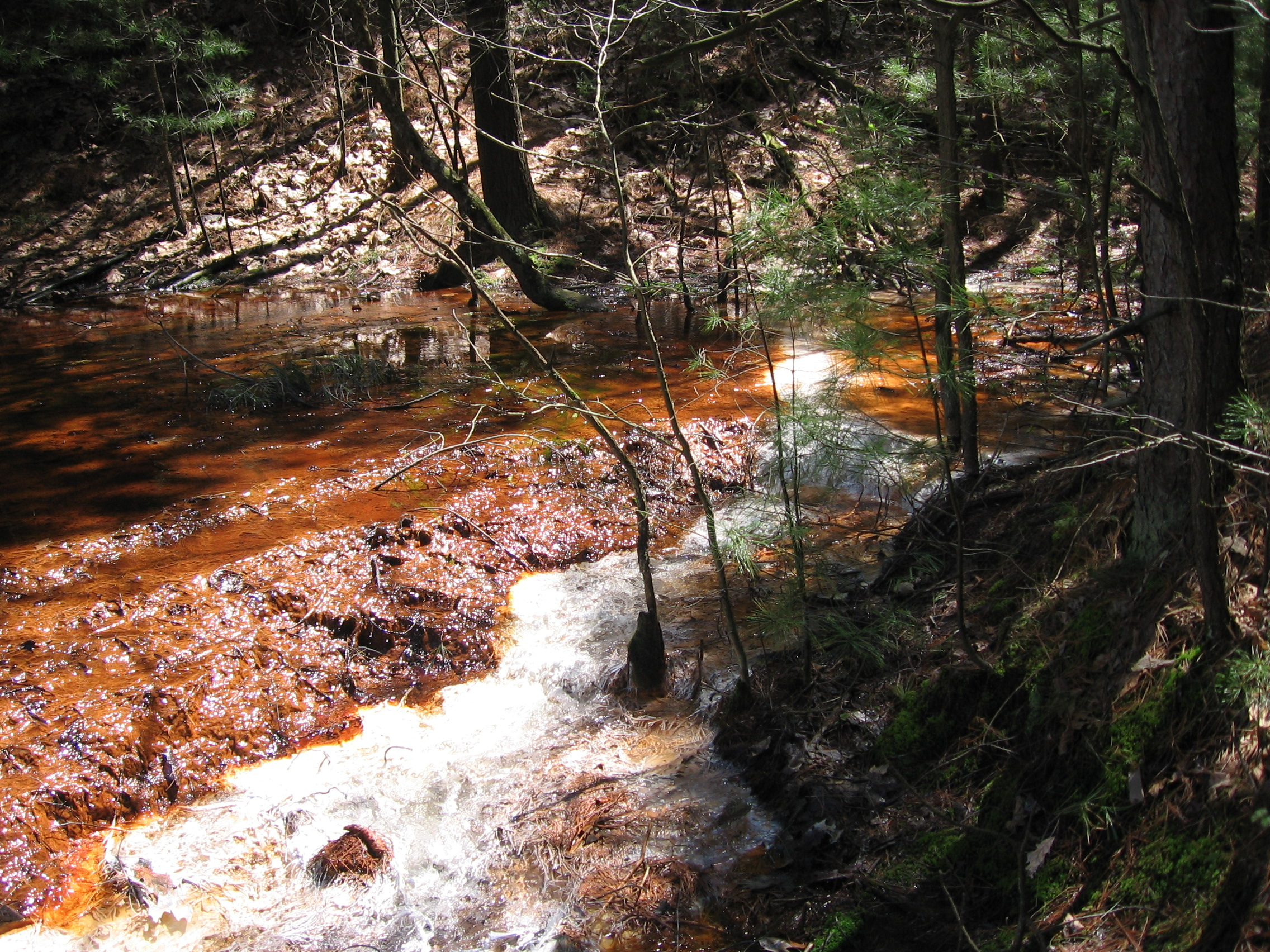 A large spring of acid mine drainage that issues from the base of a spoil deposit.