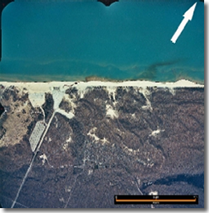Aerial photograph of Indiana Dunes State Park, with bacterial plume entering Lake Michigan from Dunes Creek.