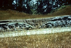 Photo showing glacial till filling a shallow stream channel that was incised into the underlying bedrock.