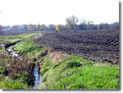 Photo showing stream adjacent to farmland.