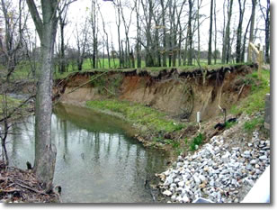 Photo showing bank erosion next to stream.